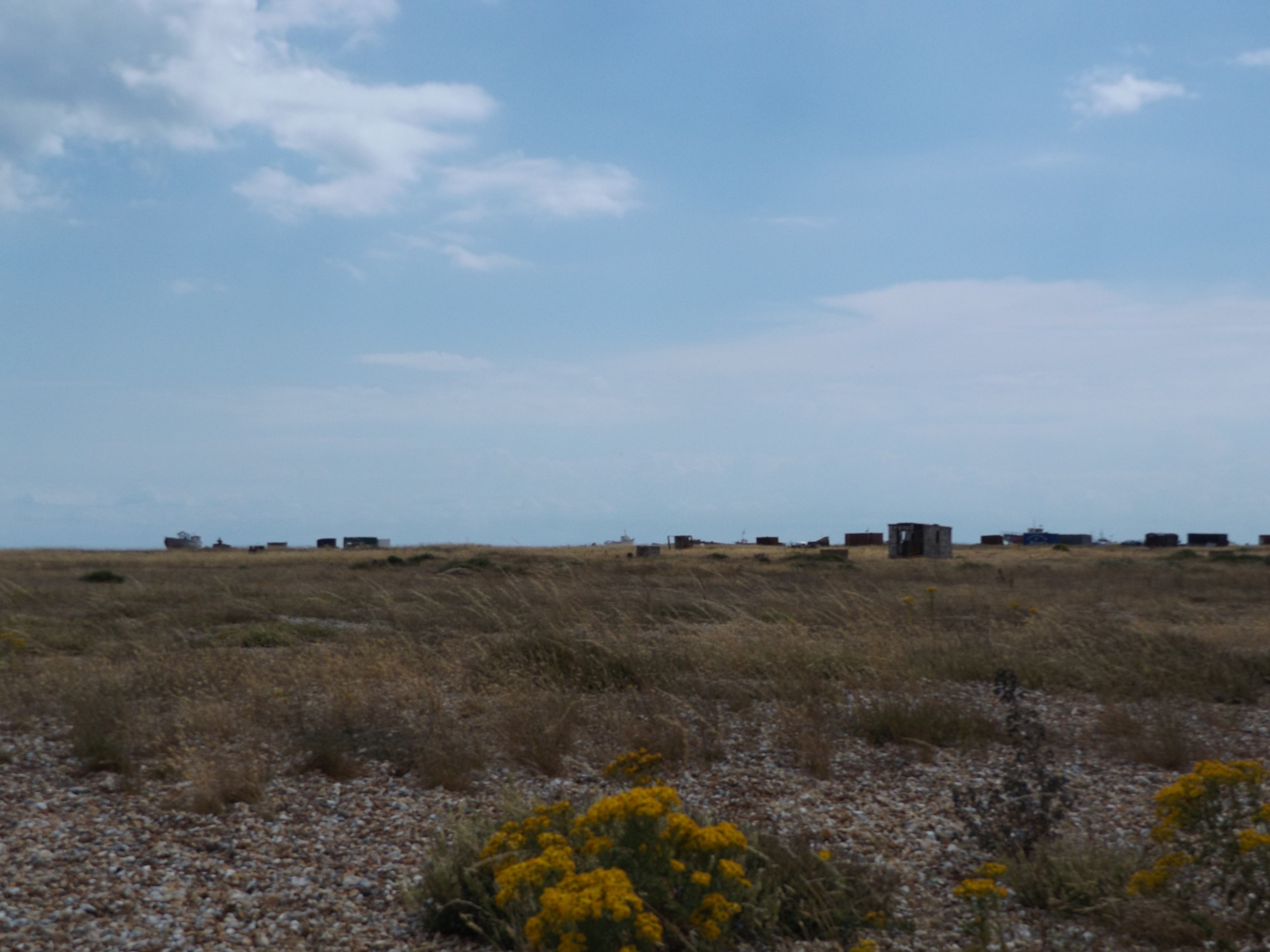 21-dungeness